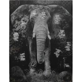 Картина Elephant Black/Grey 75х100 cm